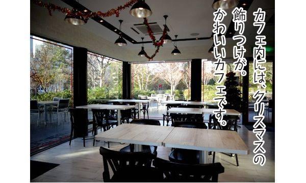 カフェ内には、クリスマスの飾りつけが。かわいいカフェです。
