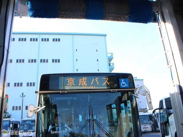 1日約12台のバスが洗われます.jpg