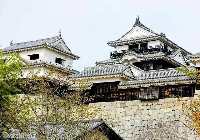 今も残る松山城の天守は日本の城の中でも貴重な財産です.jpg