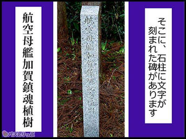 そこに、石柱に文字が刻まれた碑があります 航空母艦加賀鎮魂植樹