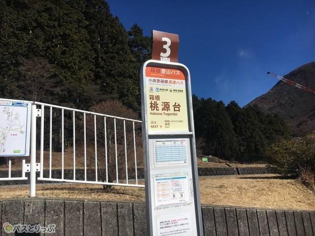 桃源台の降車地.jpg