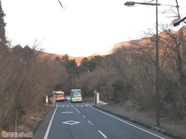 箱根の山道.jpg