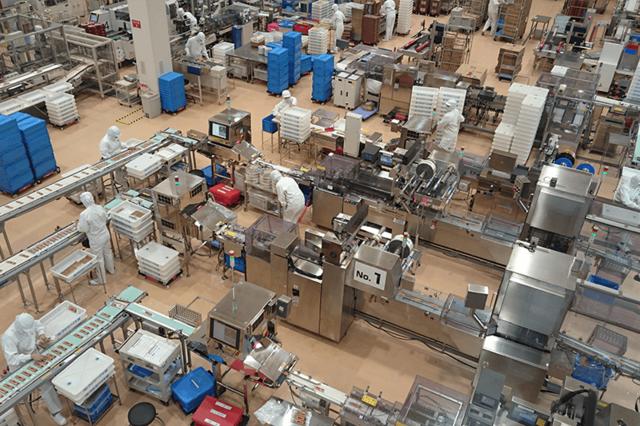 うなぎパイの製造過程が見られる工場見学