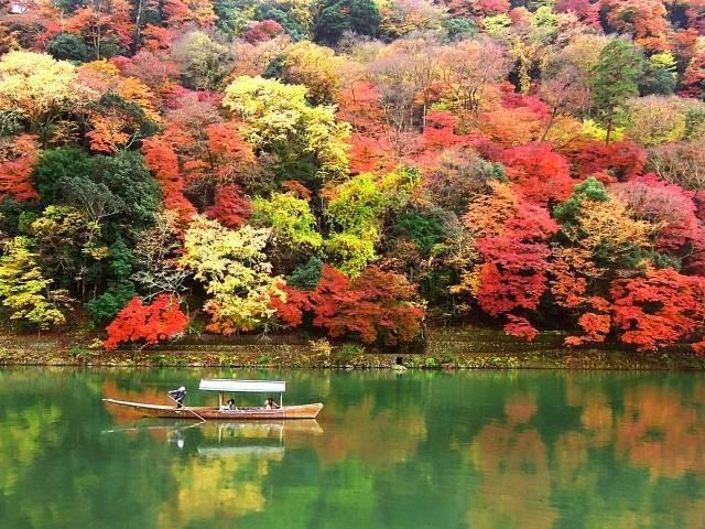 京都(紅葉).jpg