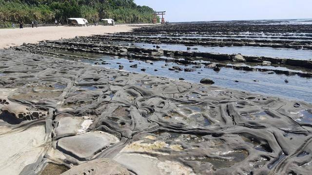 青島全体を覆う「鬼の洗濯板」と呼ばれる岩盤