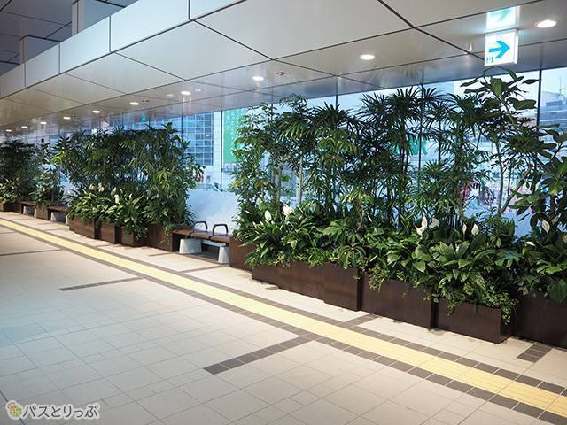 There is also plenty of green on the 3rd floor taxi stand