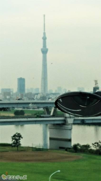 一番前の席の特権。朝の東京スカイツリーを拝むことができました。