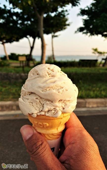 伊芸サービスエリアのブルーシールズにて「さとうきび」のアイスクリーム