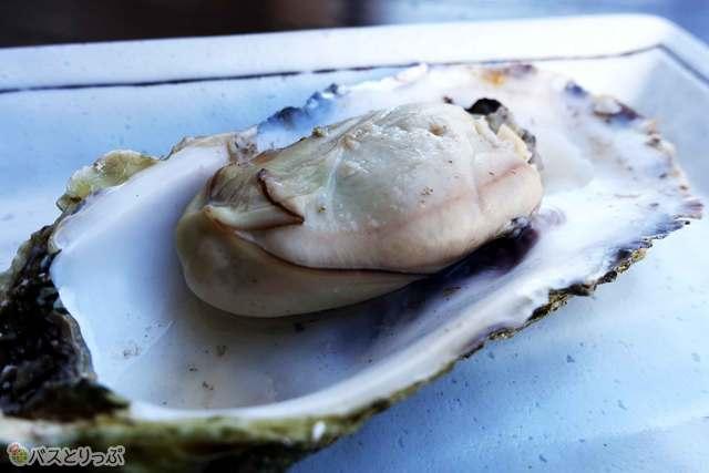 焼きたてぷりぷり焼き牡蛎
