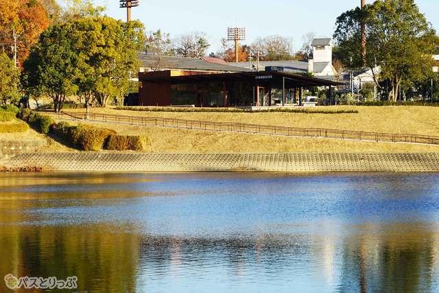 池のほとりに佇むスターバックスコーヒー