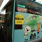 バスの後ろには走行地図が描かれています。やはり長い
