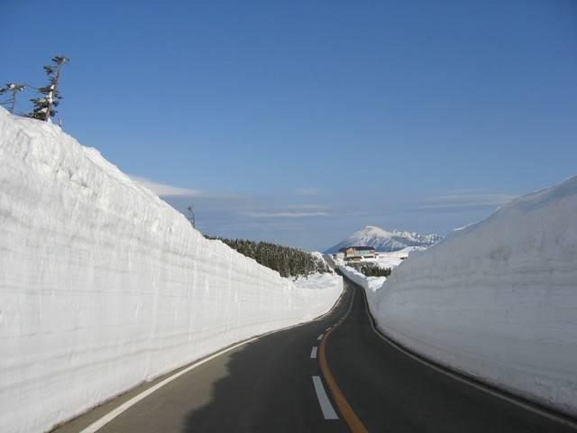 4月中旬から「雪の回廊」が見られる八幡平アスピーテライン