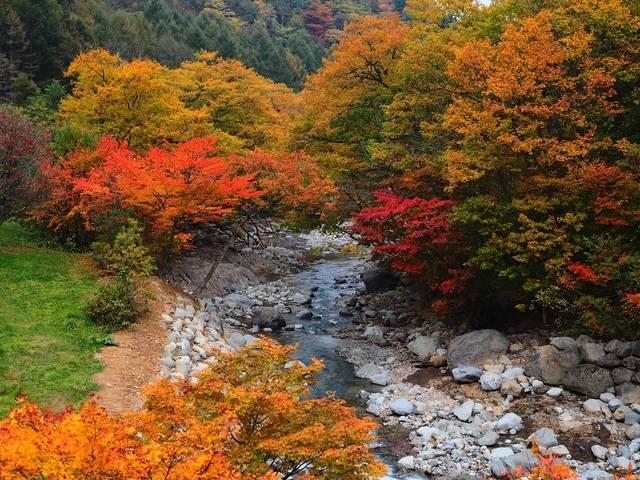 「松川渓谷」の紅葉