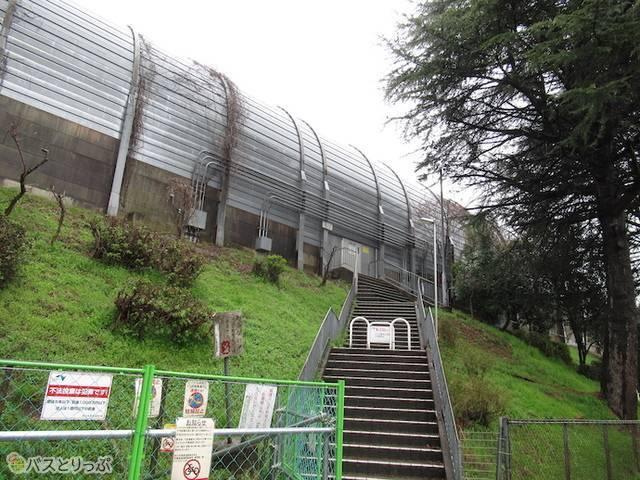 東京方面乗り場への階段
