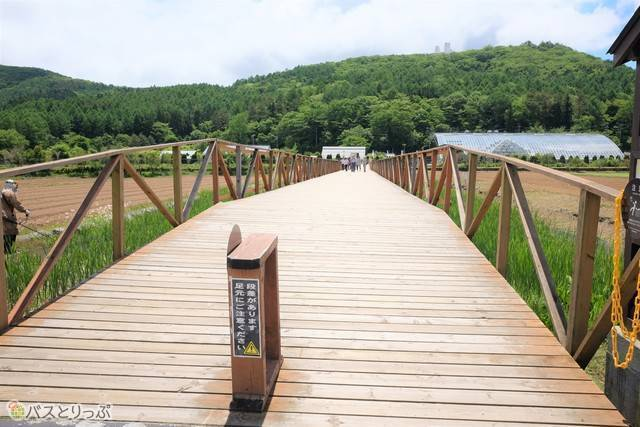 この橋を渡ると着きます
