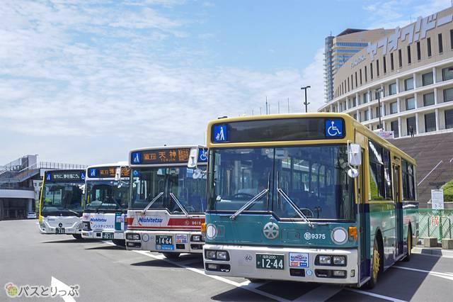 ラッピングバスや連節バスの撮影会も同日開催