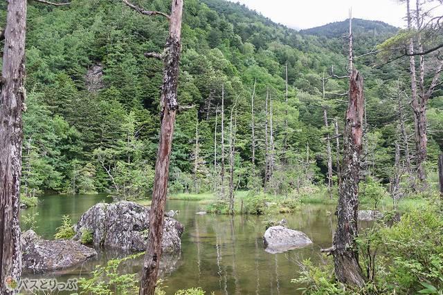 ひょうたん型で、一之池、二之池があります