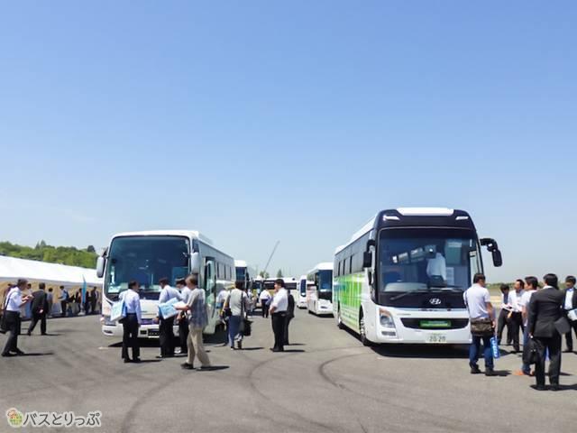 晴天の下に並ぶバス