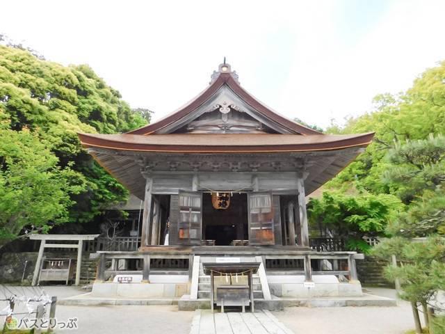 重要文化財である気多大社拝殿。美しい檜皮の屋根は必見!