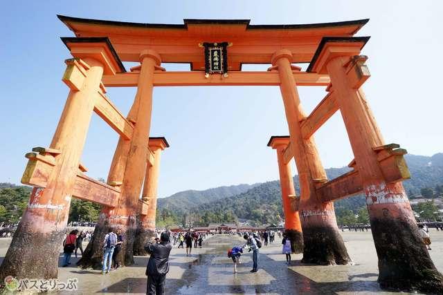厳島神社のシンボルと呼べる大鳥居