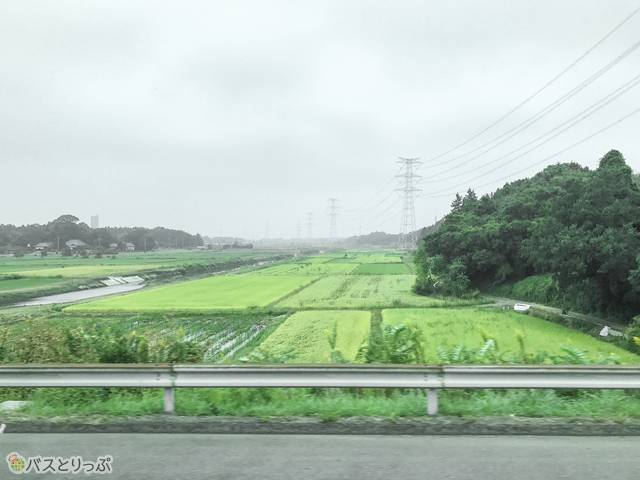 のどかな田園風景が広がっています