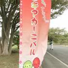 2017年の「コキアカーニバル」は、10月22日まで。期間中は無休