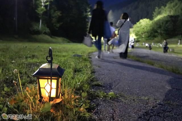 エリアを結ぶ道には、足元に可愛らしいライトが