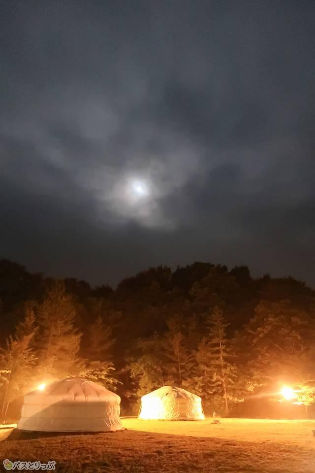 夜中の景色が幻想的でした