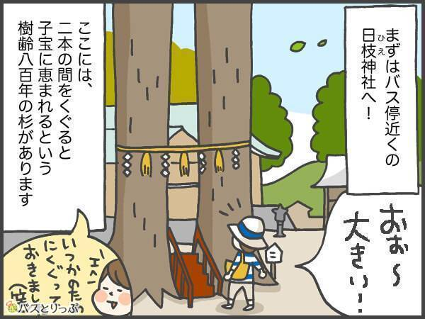 まずはバス停近くの日枝神社へ!ここには、二本の間をくぐると子宝に恵まれるという樹齢八百年の杉があります。