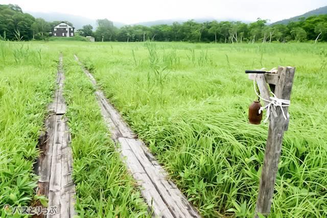 ヨッピ吊橋に向かう途中、東電小屋周辺の景色