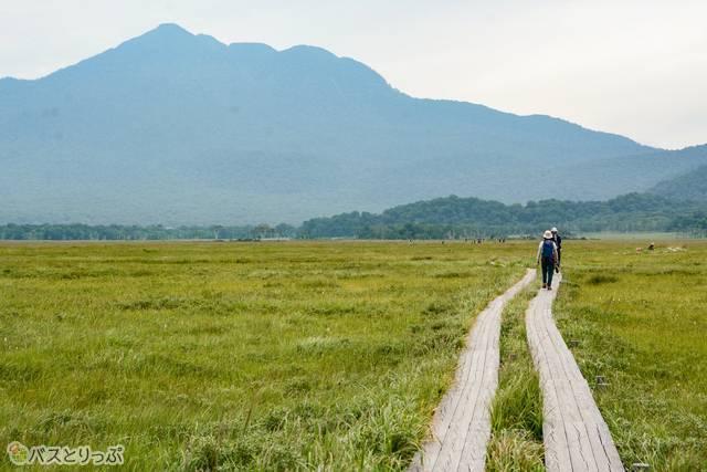 いくつかの山がそびえる尾瀬の中で最高峰の燧ケ岳(ひうちがたけ)を望みながら歩く