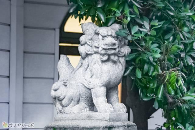 入り口前の狛犬
