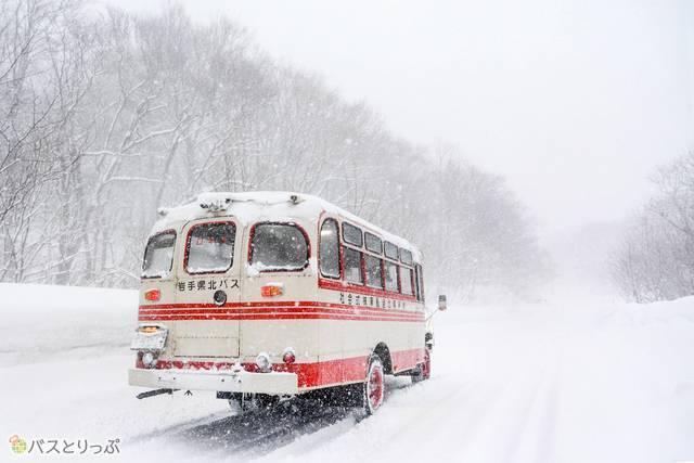 走行するボンネットバス(後方)