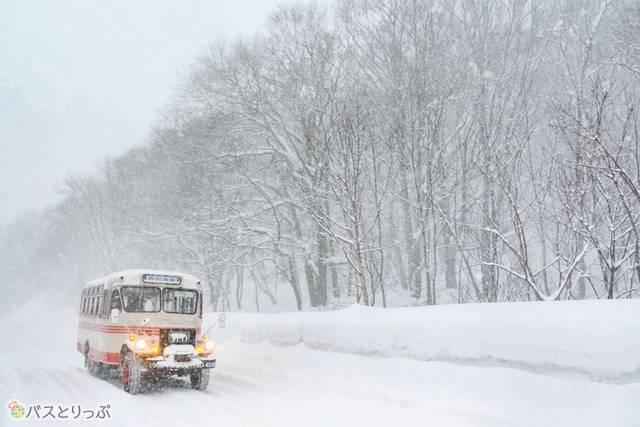 雪の中を走るボンネットバス