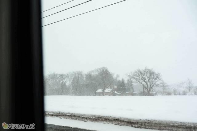 車窓は見渡す限り真っ白な世界
