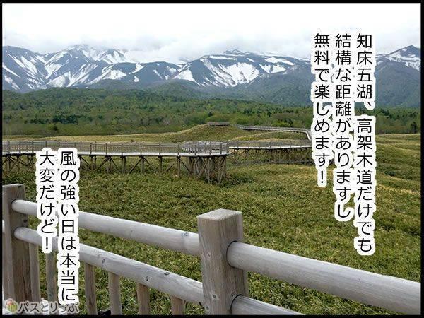 知床五湖、高架木道だけでも結構な距離がありますし無料で楽しめます!風の強い日は本当に大変だけど!