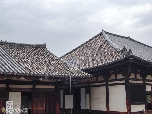禅堂(左)と極楽堂(右)の屋根の一部には、今なお飛鳥時代の瓦が葺かれている