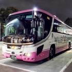 ピンクのバスと言えばウィラーエクスプレス。夜にも目立つこの可愛さ!