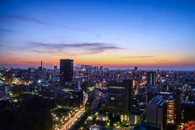 東京の夜景.jpg