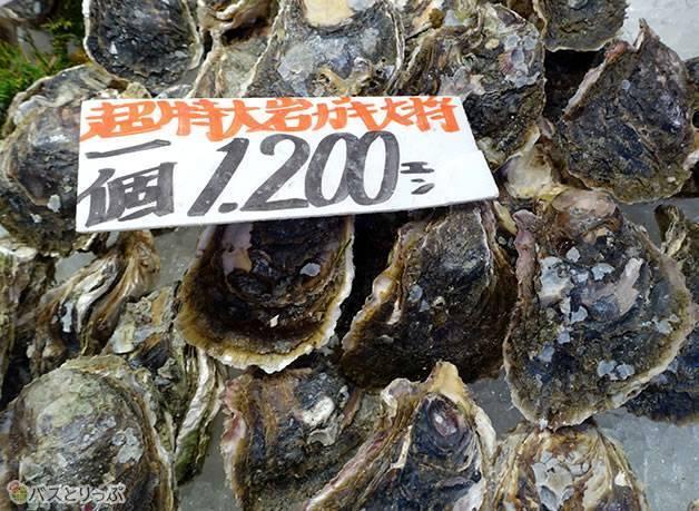 大ぶりな岩ガキがこの値段!(金沢グルメを堪能 行列の「メロンパンアイス」と近江町市場の美味しい「回転寿司」)