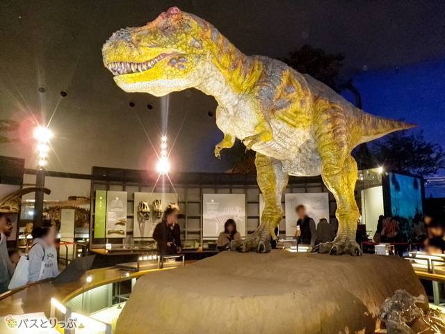福井県立恐竜博物館 リアルな巨大模型
