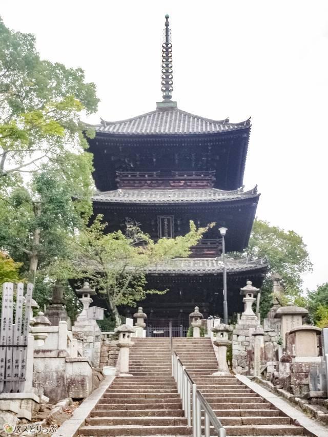 (髪の神様も! 京都・出町柳から自転車でおもしろ神社をめぐる)