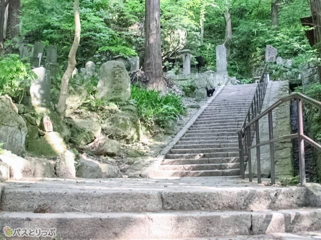 山門を抜けると石段が現れます(山形の山寺へ)
