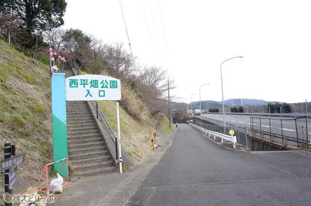 1)西平畑公園の歩行者向け入口まで下りてきたら松田山沿いに左へ真っすぐ!