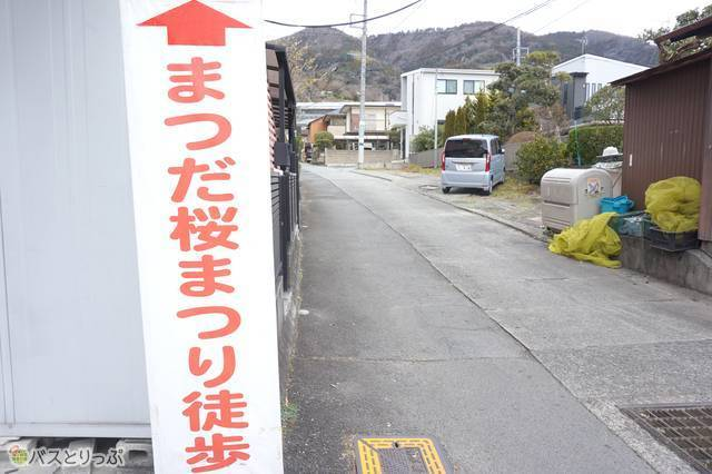 7)100m弱で県道の「松田駅入口」の交差点。横断歩道を渡り、松田駅を背にして山の方へ