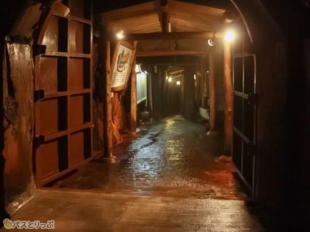 でも、一歩中に踏み込むと…そこは薄暗い洞窟(白浜海中展望塔・三段壁)