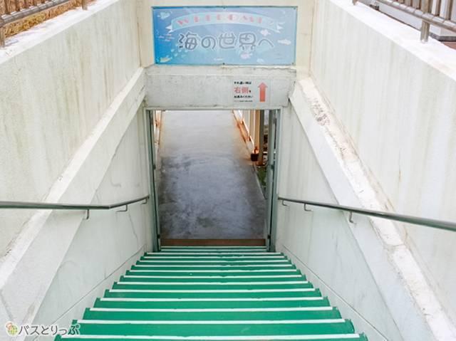 階段でも「右側通行」を念押しされました(白浜海中展望塔・三段壁)