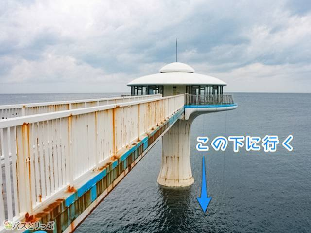 白浜海中展望塔「コーラルプリンセス」(白浜海中展望塔・三段壁)