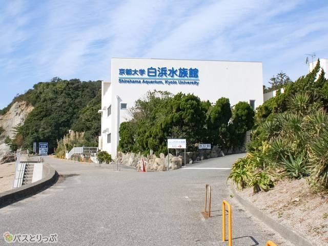 これ、スゴい水族館(京大白浜水族館)