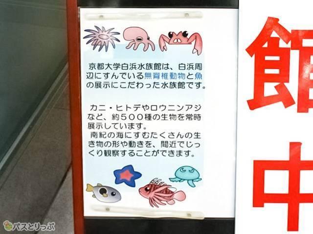 入口にあった貼り紙(京大白浜水族館)